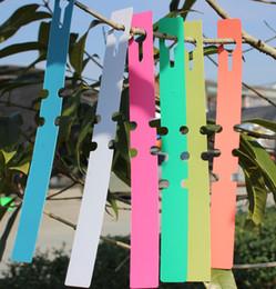 etichette ad albero Sconti Gli alberi da frutto della pianta della piantina della pianta dell'albero di appendere dell'etichetta di caduta del giardino di giardinaggio segnano lo strumento rapido di classificazione della carta