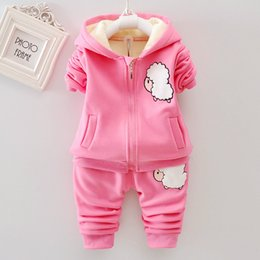 78f647d90 Girls Autumn Winter Hello Kitty Hooded Set Plus Velvet jacket Sports Suit  Warm Pant Floewr 2pcs Casual Outfit Baby Kids Clothing