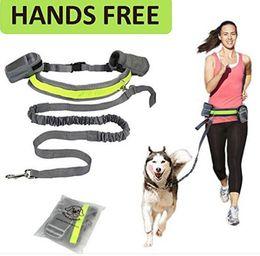 cani da allenamento Sconti Guinzaglio da passeggio per cani da corsa in jogging Imbottito da cintura catarifrangente Guinzaglio elastico Guinzaglio perfetto per cani da passeggio