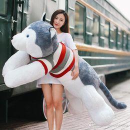 Almohadas de animales gigantes online-Pop Jumbo Animal Husky Peluche Gigante de peluche de dibujos animados Perro Muñeca Almohada para dormir Novia Decoración de regalo 150cm 170cm 190cm DY50439