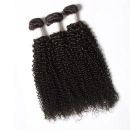 Kinky jerry locken haare online-Irina Haar, das lockiges brasilianisches Afro verworrenes lockiges 3pcs Bündel bündelt, unverarbeitetes jerry curl menschliches reines Haar webte böhmisches Haar