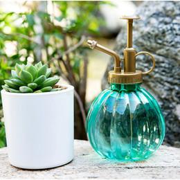 63bc6f82f008 Discount Plants Spray Bottle   Plants Spray Bottle 2019 on Sale at ...