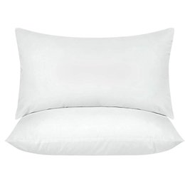 Excellent Szs Hot Bedding Throw Pillows Insert Pack Of 2 White Bed And Couch Pillows Indoor Decorative Cjindustries Chair Design For Home Cjindustriesco