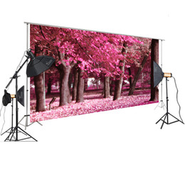 2019 backdrops de fotografia ao ar livre Fotografia HUAYI backdrop Outdoor Photography Cena de Fundo Rosa Folhas do rosa Estúdio XT-7338 backdrops de fotografia ao ar livre barato