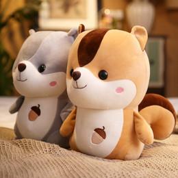 brinquedos usados frete grátis Desconto Vendas direto da fábrica de gordura esquilo para baixo algodão bonito brinquedos de pelúcia presente de aniversário criativo boneca travesseiro boneca esquilo atacado