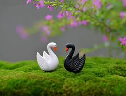 2019 jardim de penas 10 pcs Preto e branco pena Swan Garrafa decoração suprimentos musgo micro paisagem deco Deco Do Jardim artesanato Criativo desconto jardim de penas