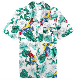 d56f688d616af0 Mens Summer Beach Hawaiian Shirt 2019 Bird Of Paradise Short Sleeve Floral  Shirts Men Casual Holiday Vacation Clothing Camisas