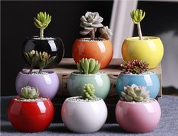 Wholesale Ceramic Pots Succulents Flower Pot Small Ball Round White Porcelain White Color Mini Creative Hot