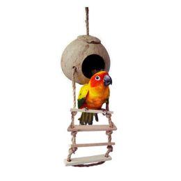 Новые Натуральные Деревянные Игрушки Попугай Кокосовая Раковина Древесины Ручной Попугай Дом Соответствия Лестница Игрушки Птиц Для Попугая от