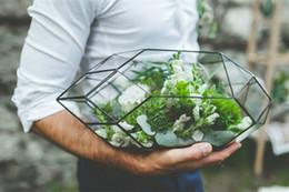 Piantagioni per orchidee online-Terrario di vetro fatto a mano / piantatrice moderna per giardinaggio dell'interno / figura geometrica di cristallo della tabella della piantatrice di orchidea Decorazione domestica della serra