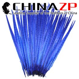 Blue Costume Tail Canada - CHINAZP Crafts Factory Wholesale Price 50pcs lot 50~55cm(20~22inch) Length Graceful Dyed Royal Blue Ringneck Pheasant Tail Feathers