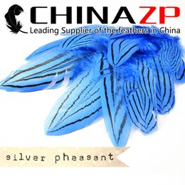 Led Costumes NZ - Leading Supplier CHINAZP Crafts Factory 50pcs lot 15~20cm(6~8inch) Length Graceful Dyed blue Silver Pheasant Feathers