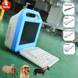 $enCountryForm.capitalKeyWord Canada - Ecografo portatil veterinario,vet ultrasound scanner A5 LCD &laptop veterinary ultrasound machine for pig, dog, cat, sheep, horse,cattle use