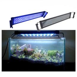 30 cm estendido para 48 cm 6 W 100-240 V Plug and Play Branco + Azul LED Aquarium Light para Fish Reef Tank Com fonte de Alimentação em Promoção