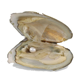 $enCountryForm.capitalKeyWord UK - Freshwater Oysters with Pearls Jewelry Gifts Shell Love Wish Pearl Oyster Vacuum-packed 6-7mm Natural Real Rice Pearls ZH005