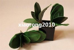 real touch orchids Canada - Real Touch Orchid Leaf Plant 10Pcs Artificial Butterfly Greenery Plants 5 Leaves for Wedding Flower Floral Accessories