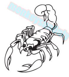 $enCountryForm.capitalKeyWord Canada - car decals stickers scorpion 14cm x 12.5cm car motorcycle applique car motorcycle waterproof vinyl decals