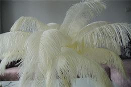 Ivory Centerpiece Canada - Free Shipping 12-14inch Ivory Ostrich Feather plumes Wedding centerpiece feather Centerpieces decoraction wedding decor party decor