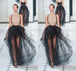 hot sexy tutus 2019 - Ruffles Puffy Sexy Black Maxi Skirts Sheer Floor Length Skirts for Women Hot Fashion Trendy Party Cocktail Dresses Tutu
