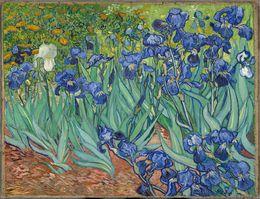 $enCountryForm.capitalKeyWord Australia - Canvas Oil Painting Art Hand Painted Irises, 1889 Vincent Van Gogh Painting Reproduction on Canvas Impressionist Unframed