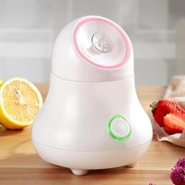 $enCountryForm.capitalKeyWord Australia - 70ml Fruit Vegetable Facial Face Steamer Nano Face Mist Spray Spa Moisture Face Sprayer Skin Care Tool Moisturing Machine