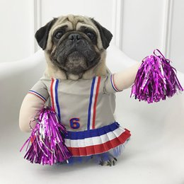 Wholesale Funny Cosplay Halloween Pet Dog Standing Clothes For Small Medium Dogs Party Cat Costume Pug Bulldog Q190523