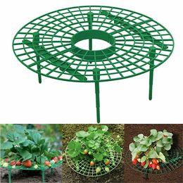 Fraise Support à châssis Balcon Plantation rack fruits soutien fleur plante pilier grimpantes jardinage stand JK2003 en Solde
