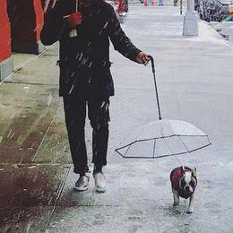 $enCountryForm.capitalKeyWord NZ - Pet Umbrellas Hyena Artifact Teddy Bear Dog Pet Rain Gear Lovely Supplies Waterproof Cat Dog Umbrella Drop Shipping In Box