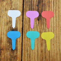 Ingrosso 200Pcs / Set T-impianto tipo di plastica Tag Giardinaggio Giardino Label Flower Plant Nursery Etichetta Tag Marker Spesso Tag RRA2069