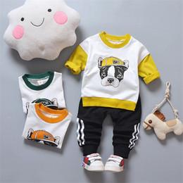 $enCountryForm.capitalKeyWord Australia - Cotton 2019 new autumn active casual kid suit children set baby clothing girls clothing boys baby clothes clothing set