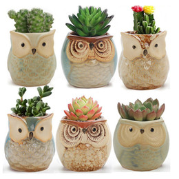 ceramics owl Australia - New Cartoon Owl-shaped Flower Pot for Succulents Fleshy Plants Flowerpot Ceramic Small Mini Home Garden Office Decoration Free DHL