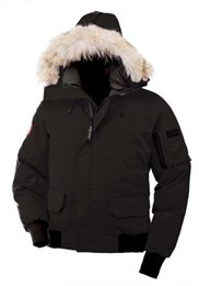 $enCountryForm.capitalKeyWord NZ - 2019 New Ariival! Canada Top Brand Men's Chilliwack Down Parka Winter Jacket Arctic Parka Navy Black Green Red Outdoor Hoodies Shipping DHL