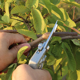venda por atacado Jardim ferramenta de metal Tesoura Enxertia ferramenta Fruit Tree poda Shears Bonsai Pruners Garden Shears jardinagem Podão Filial cortador DBC VT1119