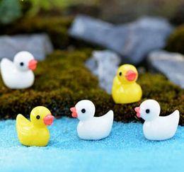 $enCountryForm.capitalKeyWord Australia - New Creative Mini Yellow duck Decoration goods DIY Bonsai Handicraft Micro Landscape Lovely duck Handicrafts 2019