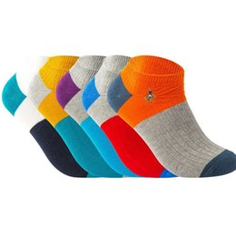 $enCountryForm.capitalKeyWord UK - 5pairs  Lot New Pier Polo Double Needle Men 'S Socks Colorful Ombed Cotton Invisible Crew Sock