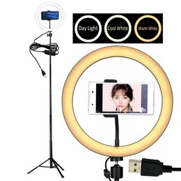 Wholesale 10 quot Selfie LED Ring Light with Tripod Stand Cell Phone Holder Desktop Lamp Mini Camera Light for YouTube Video and Live Makeup Photography