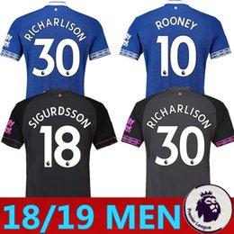 2018 2019 Everton Soccer Jersey SIGURDSSON WALCOTT BAINES BOLASIE KLAASSEN  30 RICHARLISON Custom Blue Grey White Adult Football Shirt 553e4346f