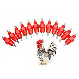 poultry nipples wholesale Australia - Chicken Bird Feeder Nipple Drinker Feeder Water Cups Nipple Chicken Drinkers Waterer 360 Angle Poultry Supplies