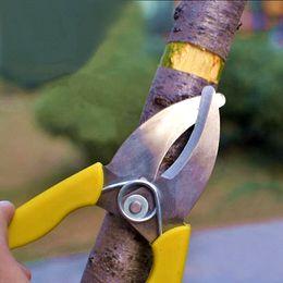 $enCountryForm.capitalKeyWord NZ - free shipping professional ring cutter bark stripper garden fruit tree ring cutting scissors ring shears branches knife