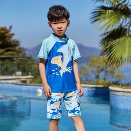 e93f2bca08166 Aipbunny 2019 Shark Fish Printed Free Shipping 2-11 Years old Boys Bikinis  Baby Swimsuit biquini Swimwear Bathing Suit Beachwear