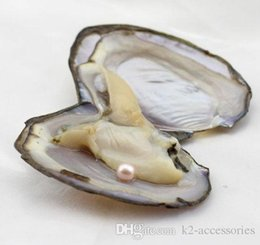 akoya pearls wholesale UK - CREAM PINK PEARL Fancy Gift Akoya High quality cheap love freshwater shell pearl oyster 5-7mm pearl oyster with vacuum packaging