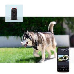 dog videos UK - Pet Camera Wearable Dog Tracker IR Night Vision Smart Tracking Device Storage Video Human Pet Two-Way Voice Pet World HD Monitor