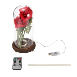 Lovers Lamp online shopping - Rose Flower Bottle LED Lamp Remote Controller Home Decor LED Night Light with Light Strings USB Powered for Mother Lover