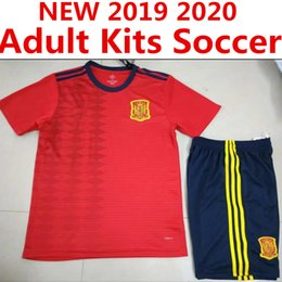 Wholesale 2019 Top Spain Jersey Adult Kits RAMOS ISCO PIQUE SERGIO A INIESTA M ASENSIO THIAGO MORATA home soccer shirt