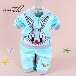 $enCountryForm.capitalKeyWord Australia - Hot baby clothing set 2015 Spring Autumn baby's set cartoon rabbit boys girls clothes twinse suits hoodie pant children