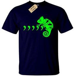 China Comma Chameleon T-Shirt mens S-5XL funny joke gift present mens 80s 90s Funny free shipping Unisex Casual top supplier chameleon gifts suppliers