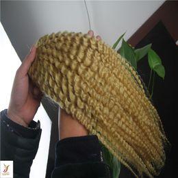 $enCountryForm.capitalKeyWord Australia - Bleach Blonde Color Indian Kinky Curly Hair Bundles 100% Human Hair Weave 10-30 Inch Remy Hair Extension 6a Unprcessed