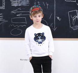 Discount korean fashion baby boy clothes - New Pattern Children Belt Shirt Boys hoodie Pure Cotton Even Caps Fashion Korean Edition Children's Clothes Sweater