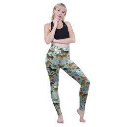 $enCountryForm.capitalKeyWord Australia - Girls High Waist Leggings Floral Dachshund 3D Graphic Full Print Spring Summer Autumn Pants Women Gym Jeggings Lady Soft Trousers (Y601901)