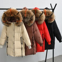 $enCountryForm.capitalKeyWord Australia - Large Real Raccoon Fur 2018 New Winter Jacket Women Long Down Jacket Female White Duck Down Parkas Thick Warm Plus Size 5XL Coat